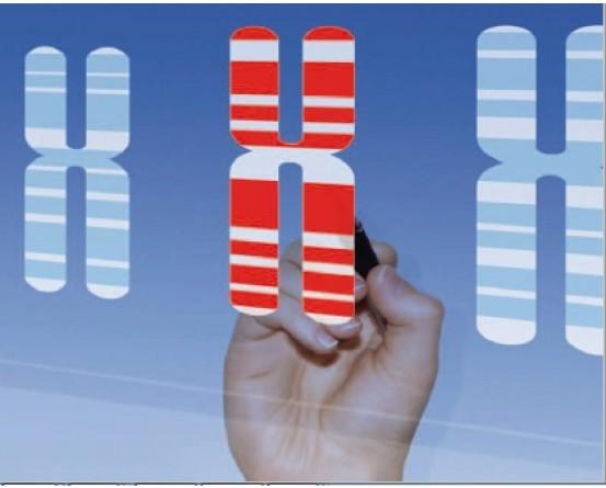 EUROCLONE Prenatal Analysis Cytogenetic Culture Media Reagents in India