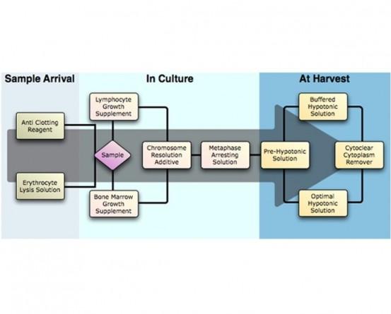GENIAL GENETICS Metaphase Arresting Solution in India