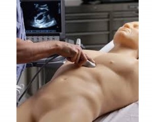 FAST Exam Ultrasound Training Model