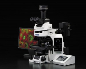 OLYMPUS Olympus BX63 Microscope in India