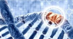 Entrogen DNA