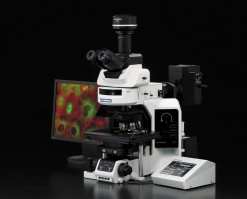 Olympus BX63 Microscope