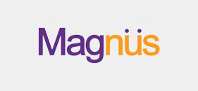 Magnus Group Logo